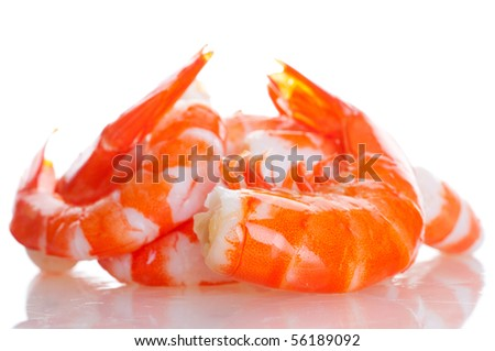 prawn - stock photo