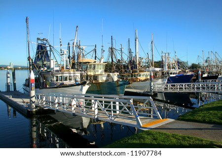 Prawn trawlers and fishing boats at dock in the early morning sun.