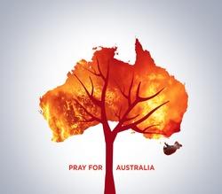 Pray for Australia. Australia bush fire concept. Tree burned by bush fire. Many  Animals killed in Fire. Koala & Kangaroo burned. Save tree save the animal. Environment day concept.