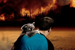 Pray for Australia - Man holding a Koala Bear in his arms. The bear is keeping his eyes closed and the man is looking at the flames from the forest. Natural disaster
