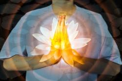Prayer hands holding Pink Lotus flower,Meditation or relax concept