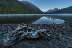 Pre-dawn fog on a mountain lake. Snow-covered rocks, large snag, log, mirror reflection of water, rocky beach