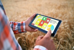 Precision farming. Farmer holds tablet using online data management software with maps, charts at wheat field. Agronomist working with touch computer screen to control and analyse agriculture business
