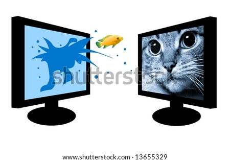 Predator cat is looking at a jumping fish