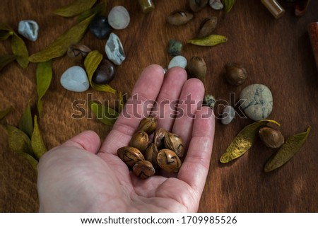Prediction of future on runes - several runes of the Elder Futhark, lie in the human palm. Against the background of scattered runes and stones on the table. Dark esoteric photo