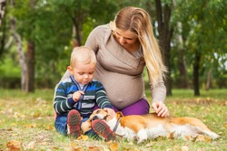 Pregnant mother with little son playing with pet in autumn park