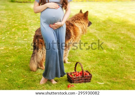 Pregnant woman holding her belly. Walk the dog. Companion for pregnancy. Detail of young pregnant