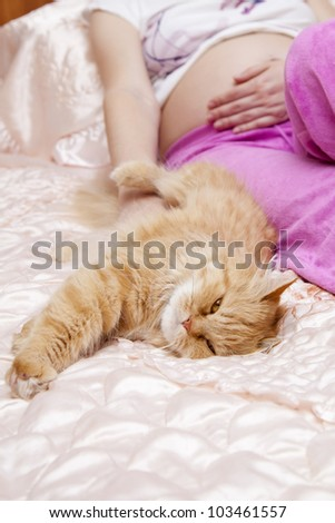 pregnant woman stroking a cat - stock photo