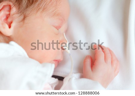 premature infant sleeping
