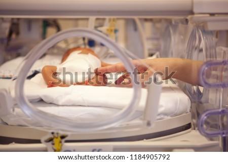 premature neonate in a special incubator Stock photo ©