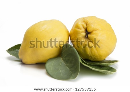 Premium fresh quinces freshly harvested to cook.
