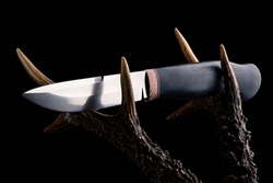Premium knife. Legendary hunting knife. Hunting knife and antler, Hunting gear on wooden board and horns close up. Still life on a hunting theme