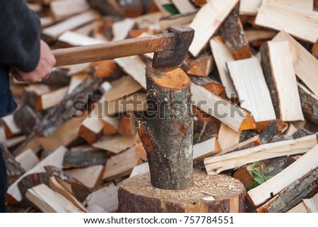 Preparation of firewood for the winter. firewood background, Stacks of firewood in the forest. Pile of firewood. #757784551