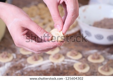 preparation of meat dumplings. woman hand`s