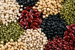 Prepared muticolor dry legumes for cooking, Many legumes for background and textured