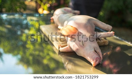 Prepared whole grilled pig in garden house for BBQ. Home cooking of pork at holiday vacations. Close up of piglet roast on a spit, spanish barbecued hot meat. Photo stock ©