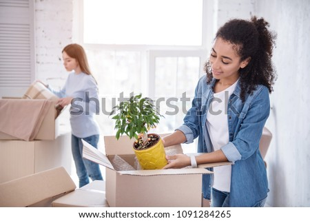 Preparing new flat. Beautiful upbeat girl unpacking a plant out of the box while her roommate retrieving a blanket