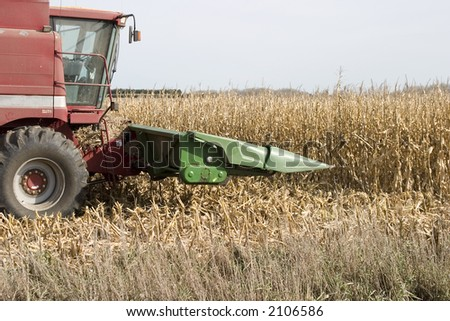 preparing to attack the corn for harvesting