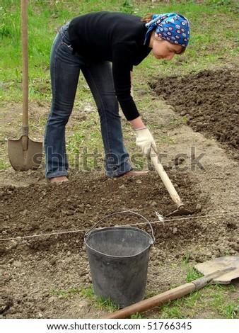 preparing vegetable bed for planting at the springtime