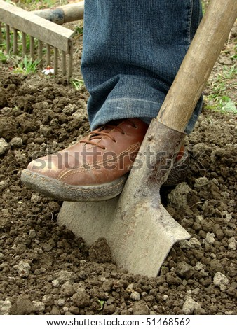 preparing vegetable bed with spade for planting