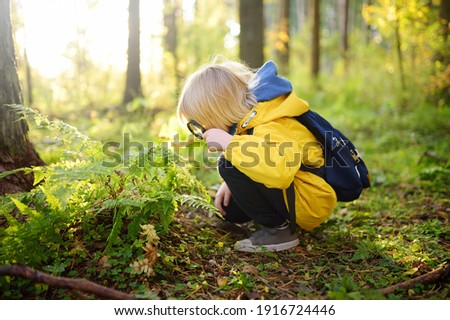 Preschooler boy is exploring nature with magnifying glass. Little child is looking on leaf of fern with magnifier. Summer vacation for inquisitive kids in forest. Hiking. Boy-scout