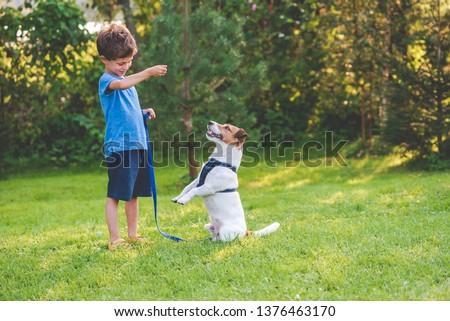 Preschooler kid boy doing dog obedience training classes with his pet Сток-фото ©