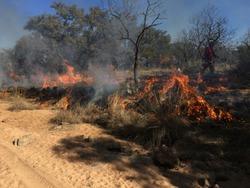 Prescribed burn crew making the necessary steps at putting in blacklines for an upcoming burn in the Texas Hill Country.