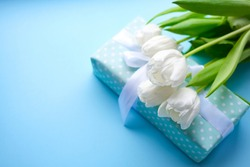 Present and flowers white tulips on blue background.women day. Mother day .Spring flowers.Gift with white ribbon.