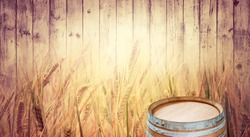 Presentation board of alcohol drinks with oak barrel and barley ears at wooden wall. Horizontal background for your poster or billboard of beer industry with copyspace for text and still life.