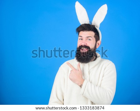Presenting your product. Easter hare pointing finger aside. Bearded man in rabbit costume. Hipster wearing long rabbit ears for Easter party. Easter bunny is spring symbol of fertility, copy space.