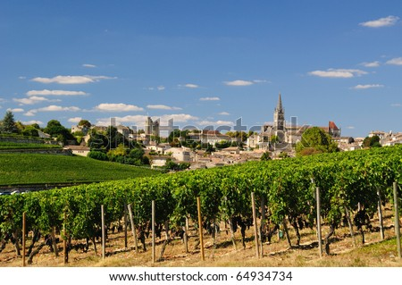Prestigious vinyard of Saint Emilion, France