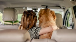 Preteen girl hugging golden retriever dog and sitting in the car inside. Child kid with purebred doggy pet in the vehicle from the back
