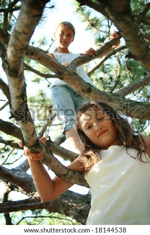 Preteens climbing in tree