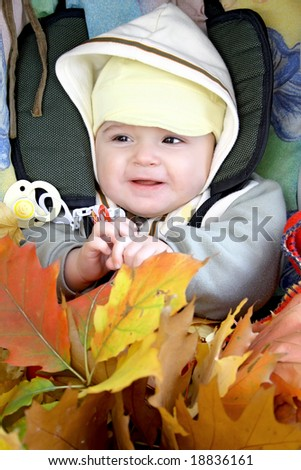 Pretty baby in baby carriage with fall leafs.
