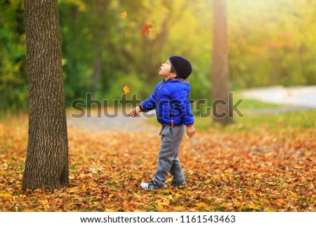 Pretty boy gathers a golden fall leaf on background of colorful autumnal landscape. Charming child catches the maple leaves in the fall during autumn season. Best conceptual picture for media projects