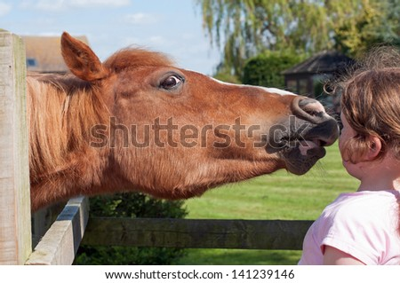 Pretty chestnut pony stretching over the fence to give a kiss