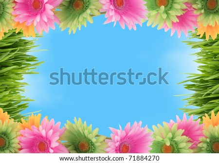 Pretty colorful gerber daisy and grass border or  frame with spring colors on blue sky background
