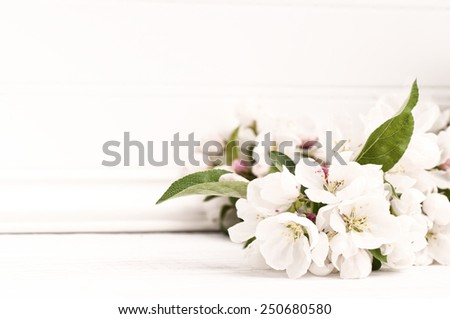 Pretty Crab Apple Blossoms in Lower corner on Rustic White Board Slats Background with empty blank room or space for text, copy, your words.  Horizontal frame, high key, vintage bleach bypass