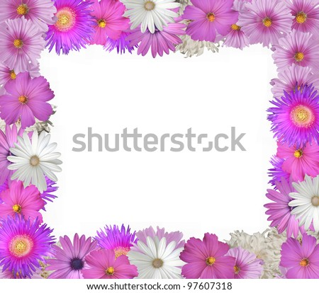 Pretty frame or border of pink  and white spring and summer flowers