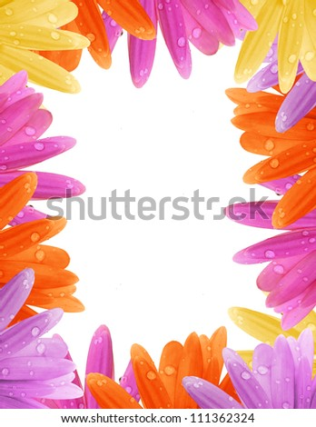 Pretty Gerbera daisy border with water drops on white background with copy space.