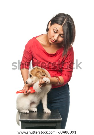 Pretty girl combs her dog - stock photo