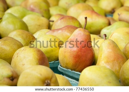 Pretty Golden Bartlett  Pear Display in Farmer's Market with room or space in background and side for copy, text, your words.  Horizontal close up.