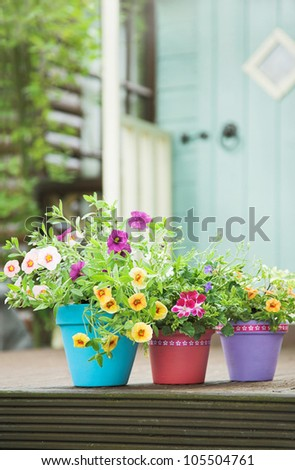 Pretty hand painted terracotta garden pots and summer flowers
