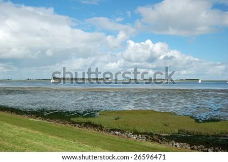 pretty landscape with dutch dike and salt marsh at ebb tide
