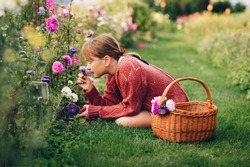 Pretty little girl working in autumn garden, child taking care of colorful chrysanthemum, gardener teenager enjoying warm and sunny day