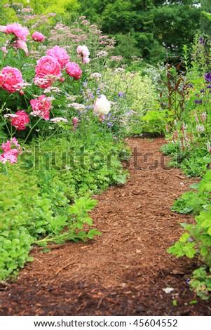 Pretty path in an english cottage garden.