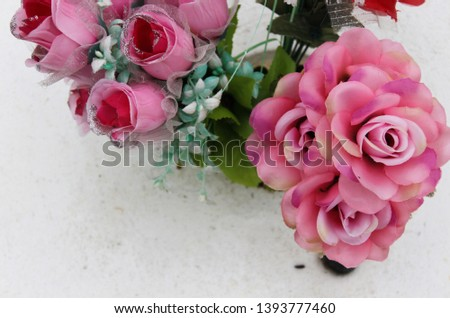 Pretty Pink Roses on white back ground #1393777460