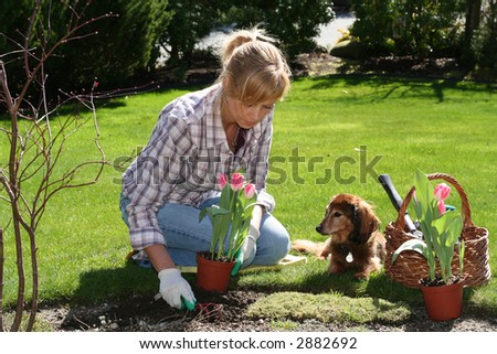Pretty woman working in her garden with a dog by her side.