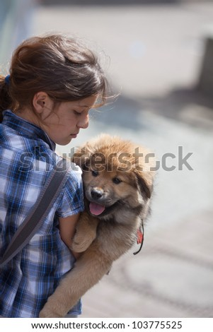 pretty young girl holds a cute Elo puppy in her arm