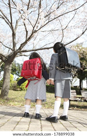 Primary Japanese boy and Japanese girl who look up at cherry tree